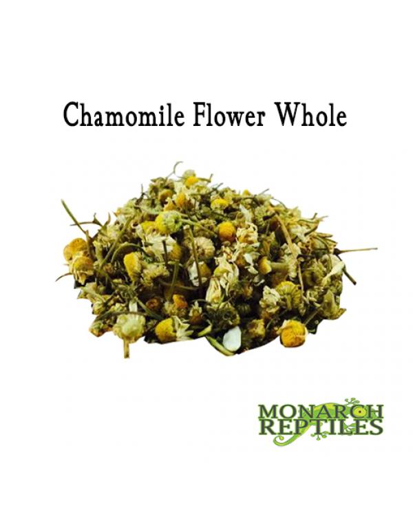 Chamomile Flower Whole