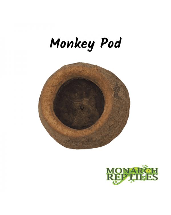 Monkey Pods