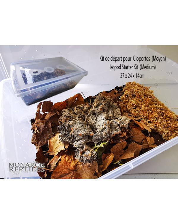 Isopod Starter Kit  - Medium  (37 x 24 x 14cm)