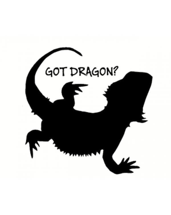 Bearded Dragon vinyl sticker Got Dragon