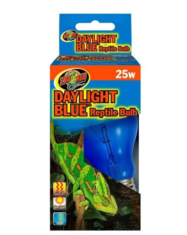 Zoomed Daylight Blue Bulb