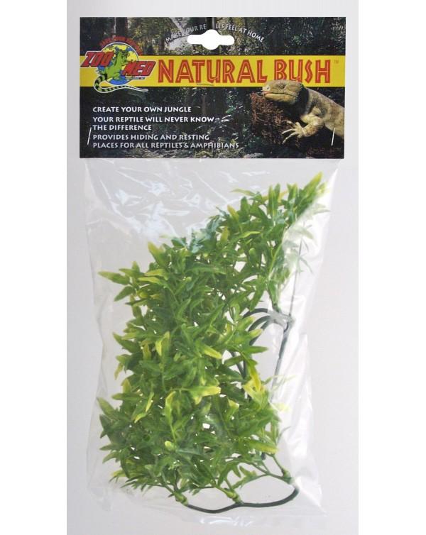 Zoomed Natural Bush Bolivian Croton